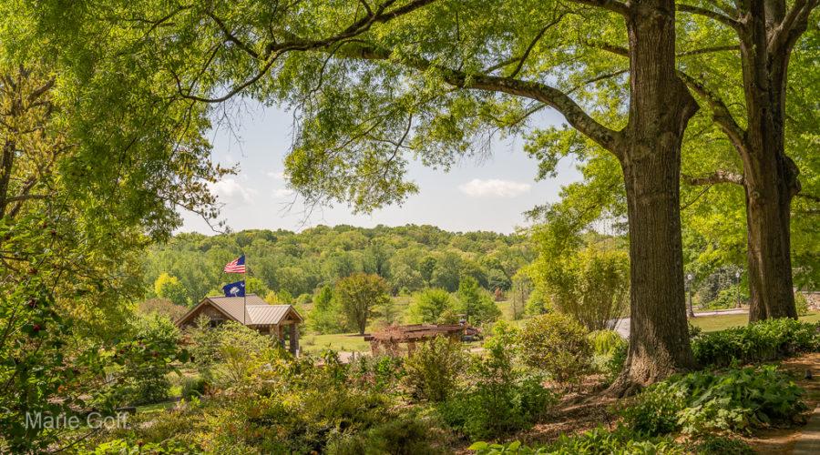 Five Reasons to Love the South Carolina Botanical Garden